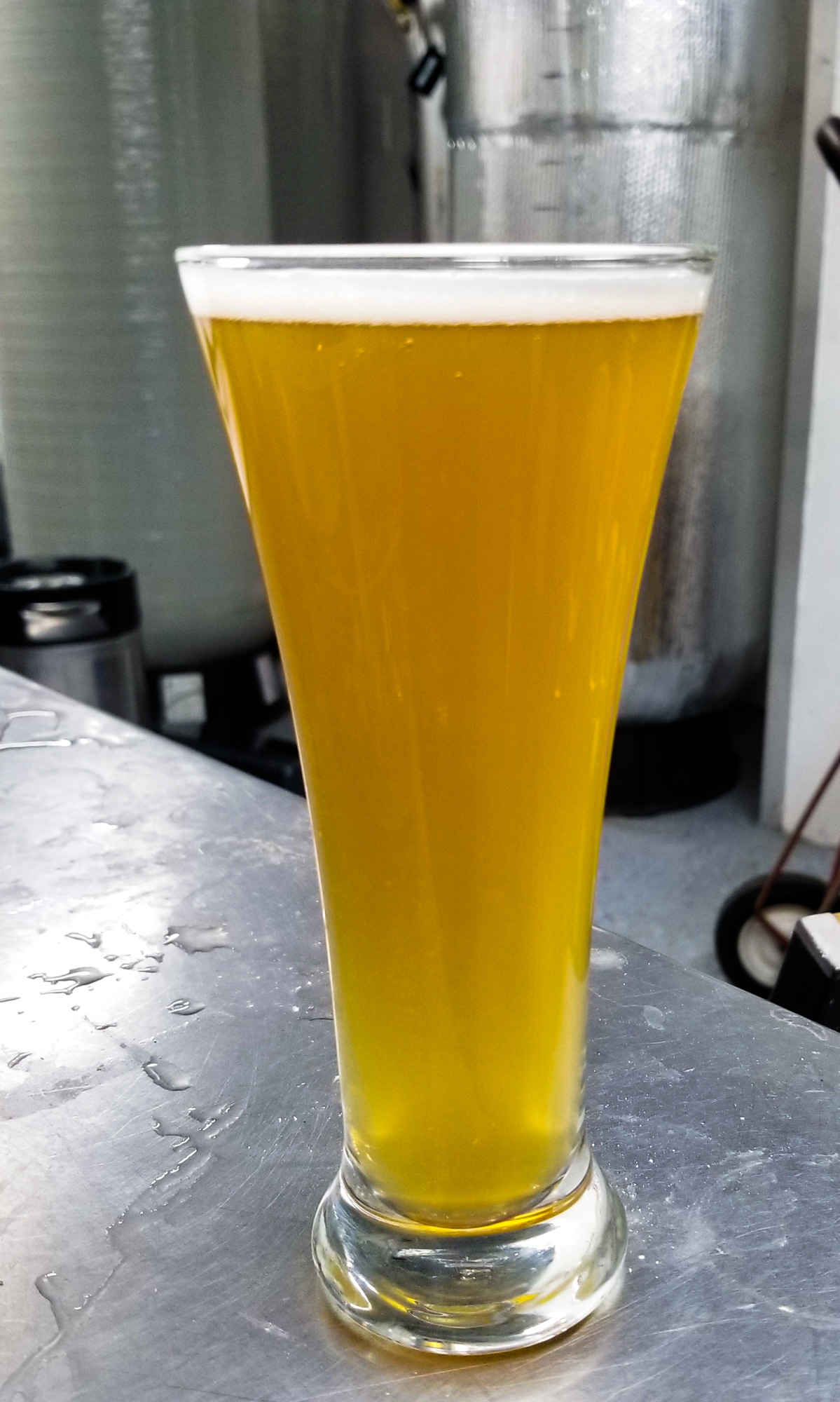 Initiative Cream Ale from Chaotic Good Brewing Company • Photo by Scott Stroh